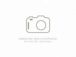 BMW Serie 3 320d xDrive Luxury foto numero 1